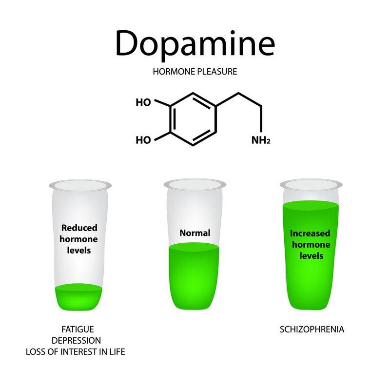 Dopaminmangel, Dopaminüberschuss und ein normaler Dopaminspiegel | Ist der Spiegel an Dopamin erhöht, können u.U. Formen von Schizophrenie gefördert werden (© timonina / Fotolia)